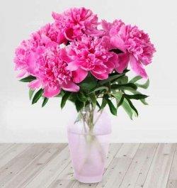 זר פרחים פיונים