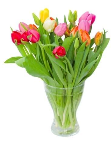 זר פרחים טוליפים אביבי