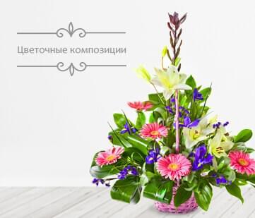 Доставка цветов в хайфе цветы купить в челябинске дешево