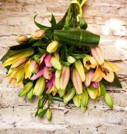 זר פרחים קזבלנקה