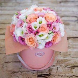 קופסת פרחים - פלורה