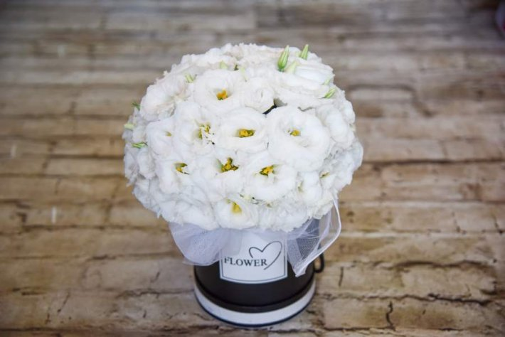 קופסת פרחי ליזיאנטוס